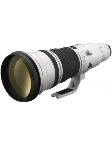 Canon EF 600mm f 4.0 L IS...